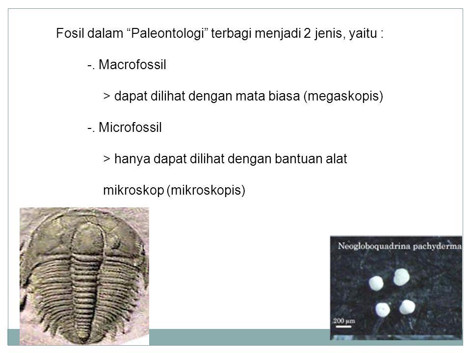 """Fosil dalam """"Paleontologi"""" terbagi menjadi 2 jenis, yaitu : -. Macrofossil > dapat dilihat dengan mata biasa (megaskopis) -. Microfossil > hanya dapat"""