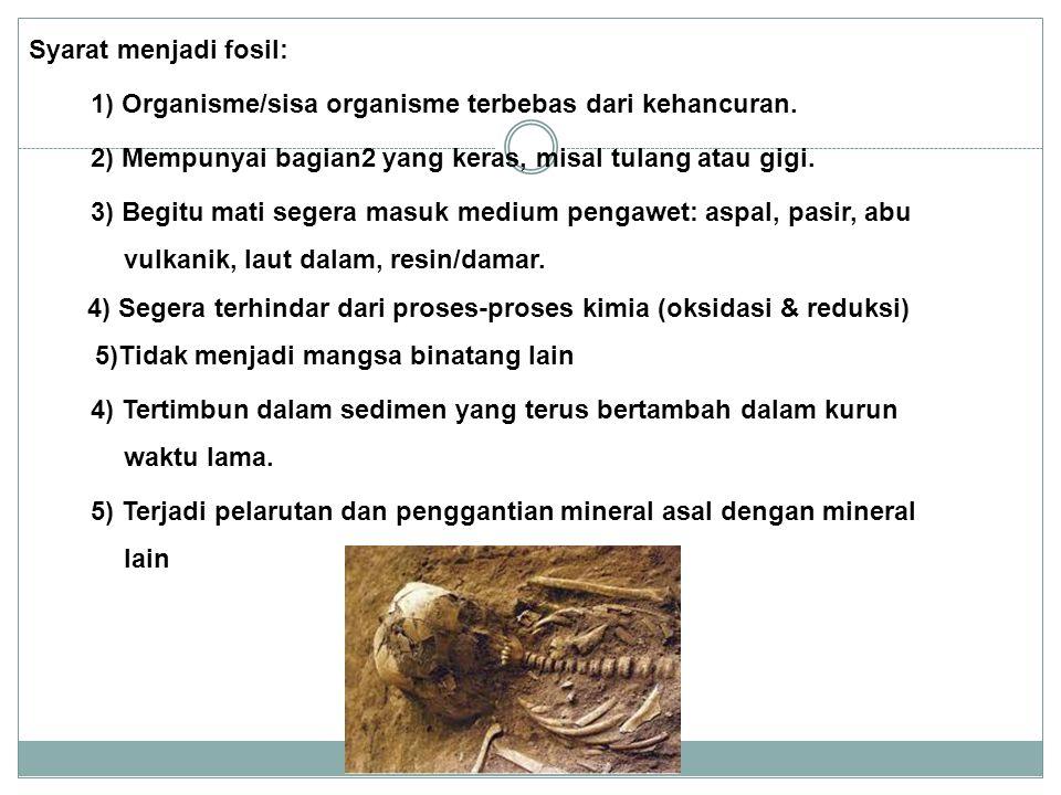 Syarat menjadi fosil: 1) Organisme/sisa organisme terbebas dari kehancuran. 2) Mempunyai bagian2 yang keras, misal tulang atau gigi. 3) Begitu mati se