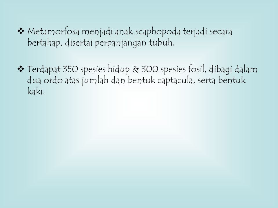  Metamorfosa menjadi anak scaphopoda terjadi secara bertahap, disertai perpanjangan tubuh.  Terdapat 350 spesies hidup & 300 spesies fosil, dibagi d