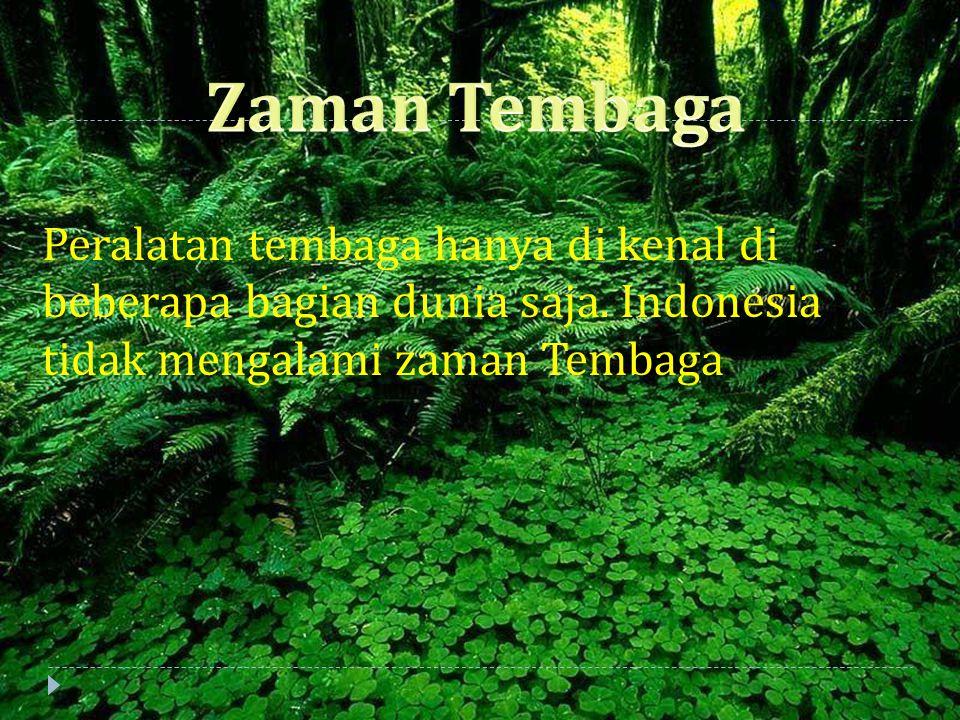 Peralatan tembaga hanya di kenal di beberapa bagian dunia saja. Indonesia tidak mengalami zaman Tembaga.