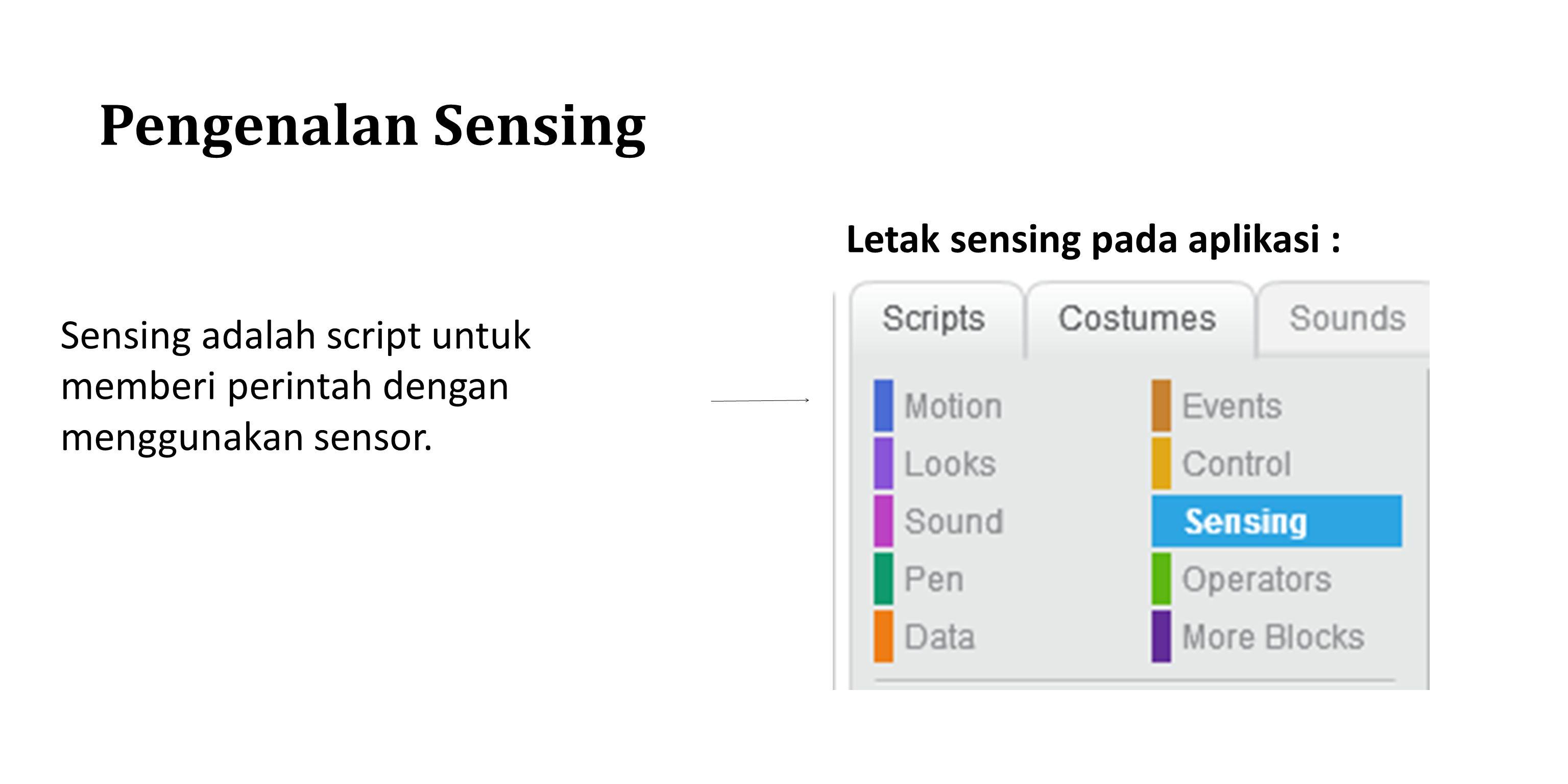 Pengenalan Sensing Letak sensing pada aplikasi : Sensing adalah script untuk memberi perintah dengan menggunakan sensor.