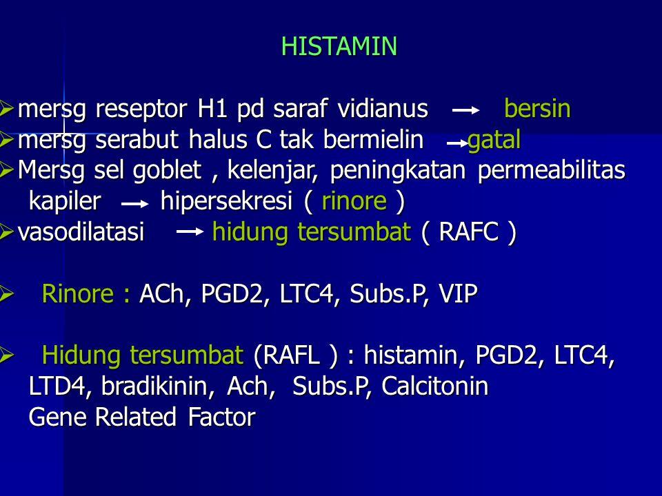 HISTAMIN  mersg reseptor H1 pd saraf vidianus  mersg serabut halus C tak bermielin gatal  Mersg sel goblet, kelenjar, peningkatan permeabilitas kapiler hipersekresi ( rinore ) kapiler hipersekresi ( rinore )  vasodilatasi hidung tersumbat ( RAFC )  Rinore : ACh, PGD2, LTC4, Subs.P, VIP  Hidung tersumbat (RAFL ) : histamin, PGD2, LTC4, LTD4, bradikinin, Ach, Subs.P, Calcitonin LTD4, bradikinin, Ach, Subs.P, Calcitonin Gene Related Factor Gene Related Factor bersin