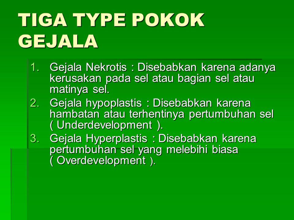 TIGA TYPE POKOK GEJALA 1.Gejala Nekrotis : Disebabkan karena adanya kerusakan pada sel atau bagian sel atau matinya sel. 2.Gejala hypoplastis : Diseba