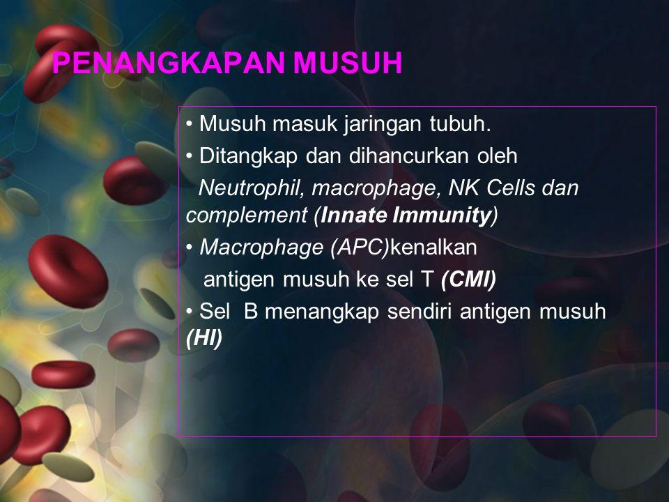 PENANGKAPAN MUSUH Musuh masuk jaringan tubuh. Ditangkap dan dihancurkan oleh Neutrophil, macrophage, NK Cells dan complement (Innate Immunity) Macroph