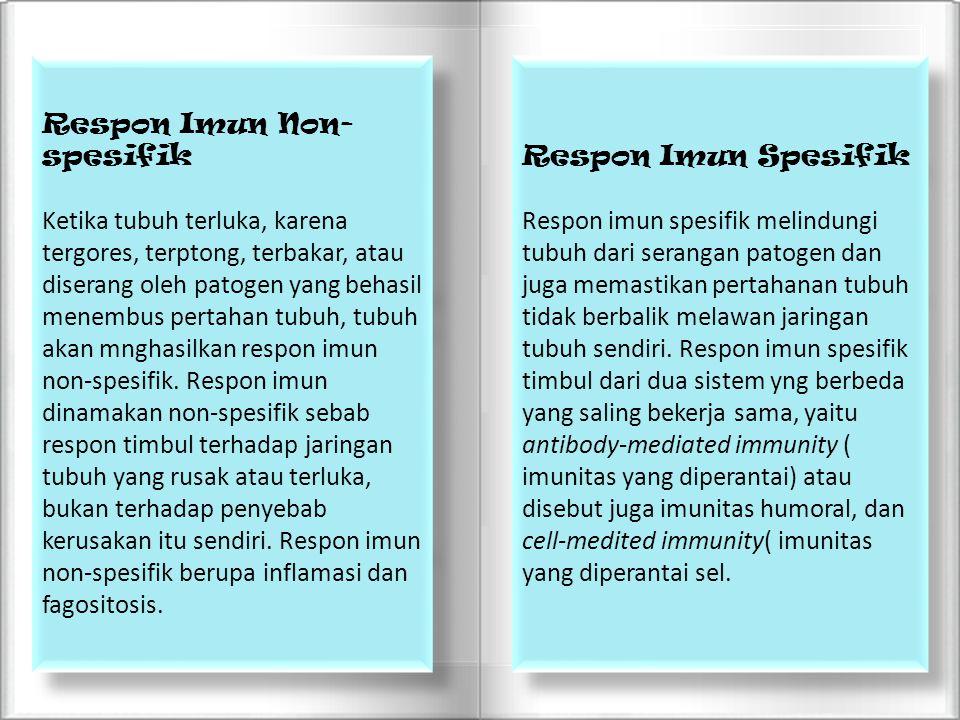 Respon Imun Non- spesifik Ketika tubuh terluka, karena tergores, terptong, terbakar, atau diserang oleh patogen yang behasil menembus pertahan tubuh,