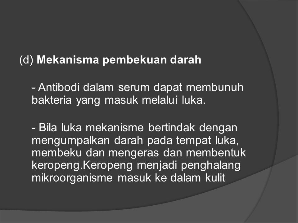 (d) Mekanisma pembekuan darah - Antibodi dalam serum dapat membunuh bakteria yang masuk melalui luka. - Bila luka mekanisme bertindak dengan mengumpal