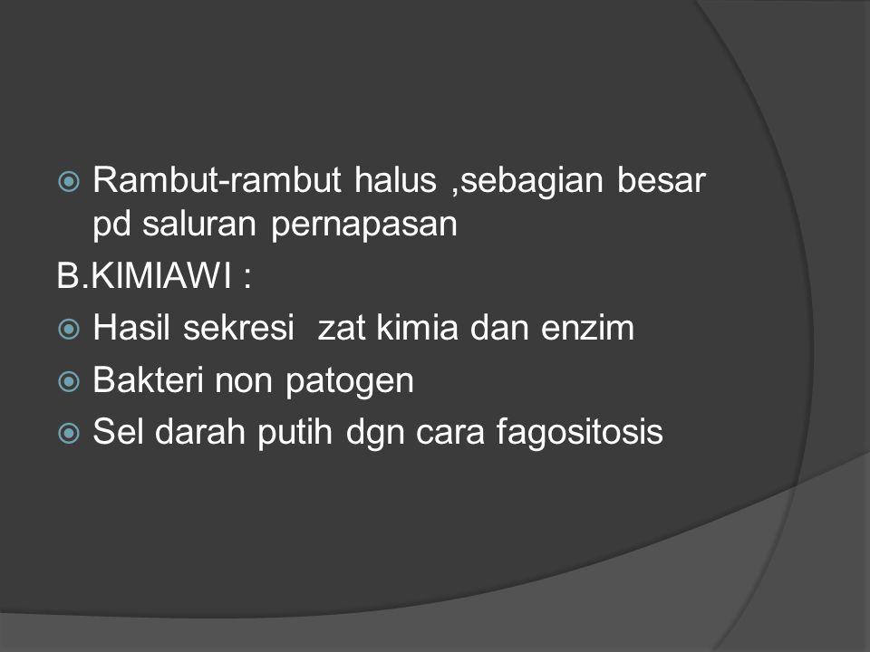  Rambut-rambut halus,sebagian besar pd saluran pernapasan B.KIMIAWI :  Hasil sekresi zat kimia dan enzim  Bakteri non patogen  Sel darah putih dgn cara fagositosis