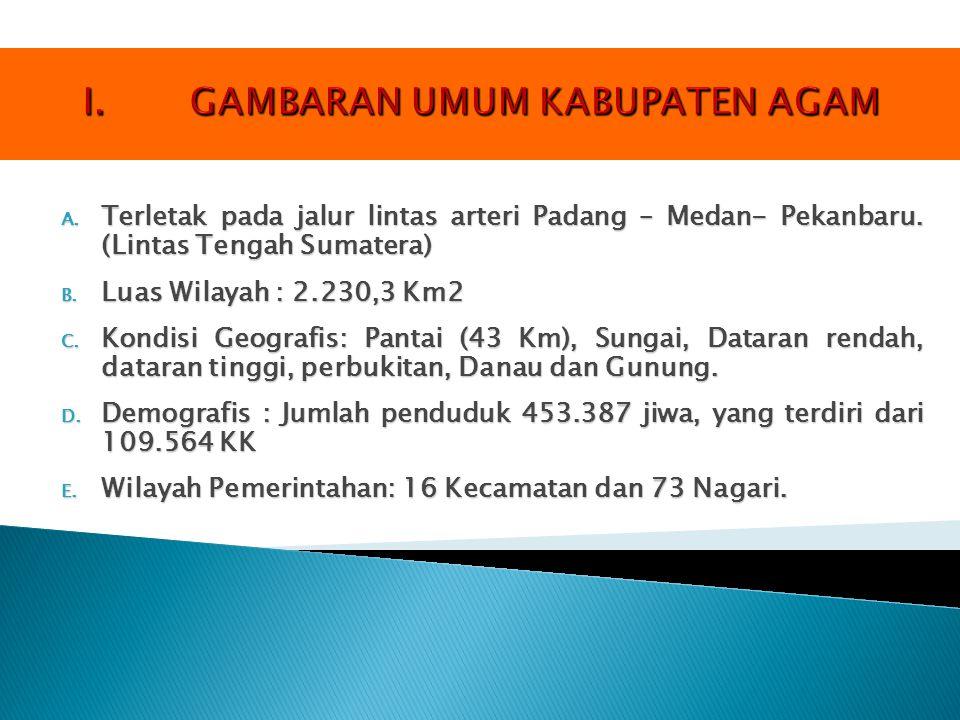 A. Terletak pada jalur lintas arteri Padang – Medan- Pekanbaru. (Lintas Tengah Sumatera) B. Luas Wilayah : 2.230,3 Km2 C. Kondisi Geografis: Pantai (4
