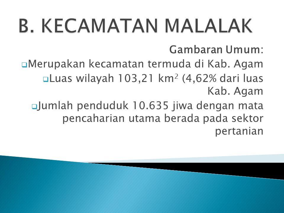 Gambaran Umum:  Merupakan kecamatan termuda di Kab. Agam  Luas wilayah 103,21 km 2 (4,62% dari luas Kab. Agam  Jumlah penduduk 10.635 jiwa dengan m