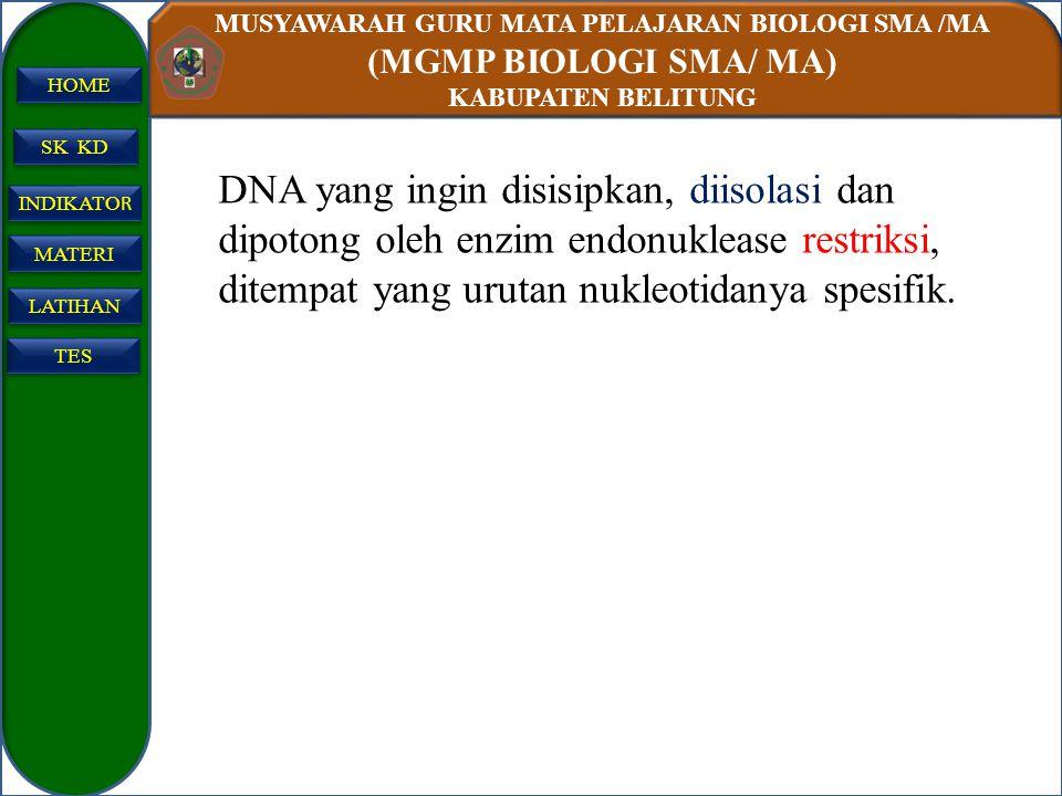 MUSYAWARAH GURU MATA PELAJARAN BIOLOGI SMA /MA (MGMP BIOLOGI SMA/ MA) KABUPATEN BELITUNG SK KD INDIKATO R INDIKATO R MATERI LATIHAN TES HOME DNA yang