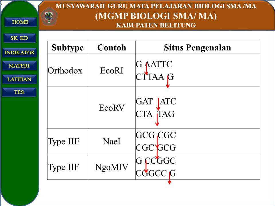 MUSYAWARAH GURU MATA PELAJARAN BIOLOGI SMA /MA (MGMP BIOLOGI SMA/ MA) KABUPATEN BELITUNG SK KD INDIKATO R INDIKATO R MATERI LATIHAN TES HOME SubtypeCo