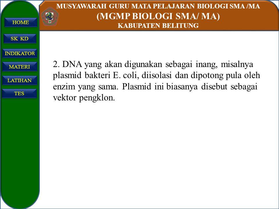 MUSYAWARAH GURU MATA PELAJARAN BIOLOGI SMA /MA (MGMP BIOLOGI SMA/ MA) KABUPATEN BELITUNG SK KD INDIKATO R INDIKATO R MATERI LATIHAN TES HOME 2. DNA ya
