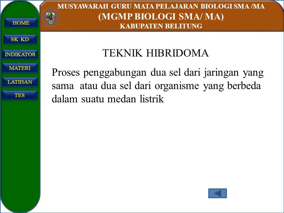 MUSYAWARAH GURU MATA PELAJARAN BIOLOGI SMA /MA (MGMP BIOLOGI SMA/ MA) KABUPATEN BELITUNG SK KD INDIKATO R INDIKATO R MATERI LATIHAN TES HOME TEKNIK HI