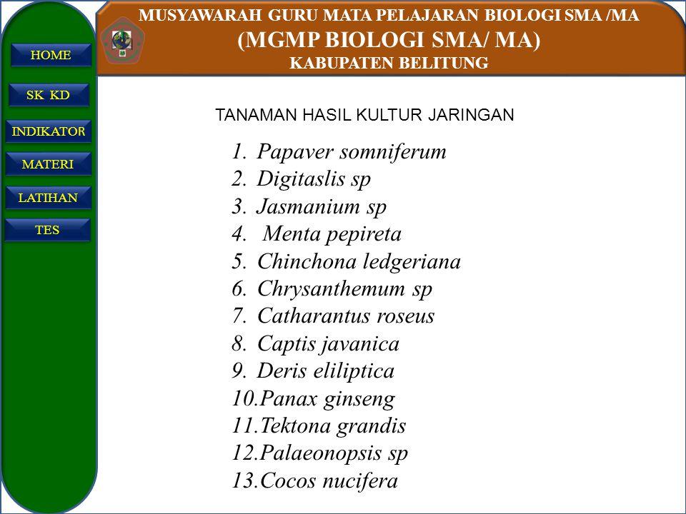 MUSYAWARAH GURU MATA PELAJARAN BIOLOGI SMA /MA (MGMP BIOLOGI SMA/ MA) KABUPATEN BELITUNG SK KD INDIKATO R INDIKATO R MATERI LATIHAN TES HOME TANAMAN H