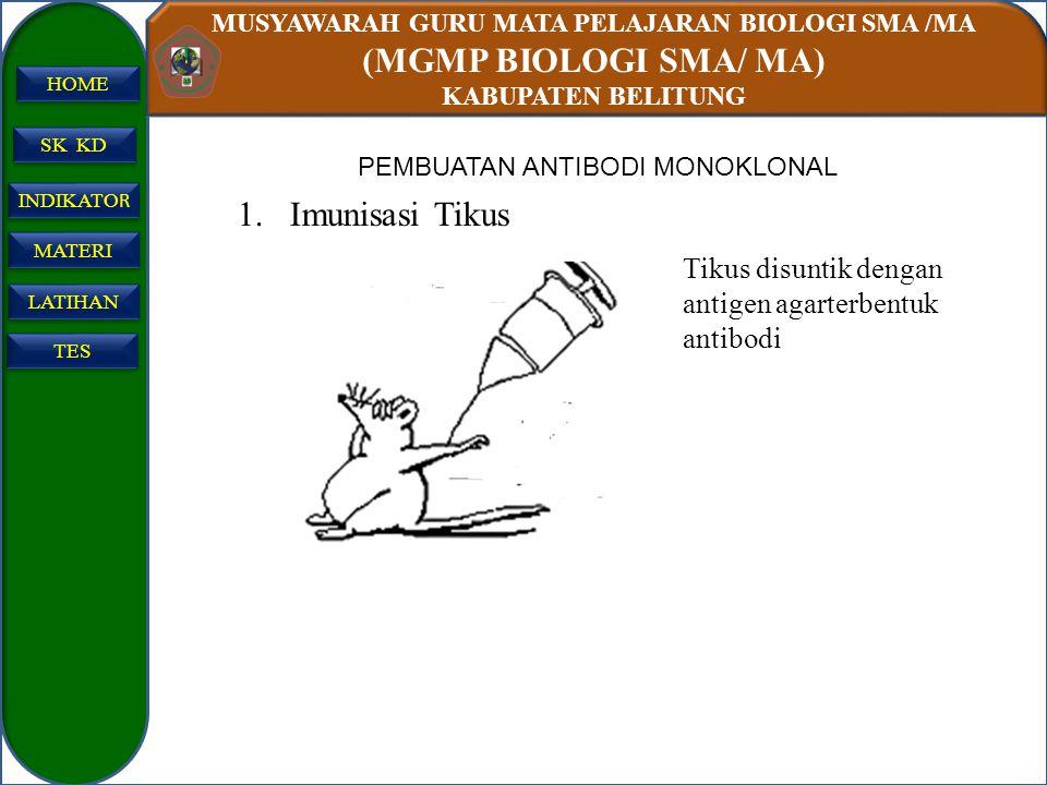 MUSYAWARAH GURU MATA PELAJARAN BIOLOGI SMA /MA (MGMP BIOLOGI SMA/ MA) KABUPATEN BELITUNG SK KD INDIKATO R INDIKATO R MATERI LATIHAN TES HOME 1.Imunisa