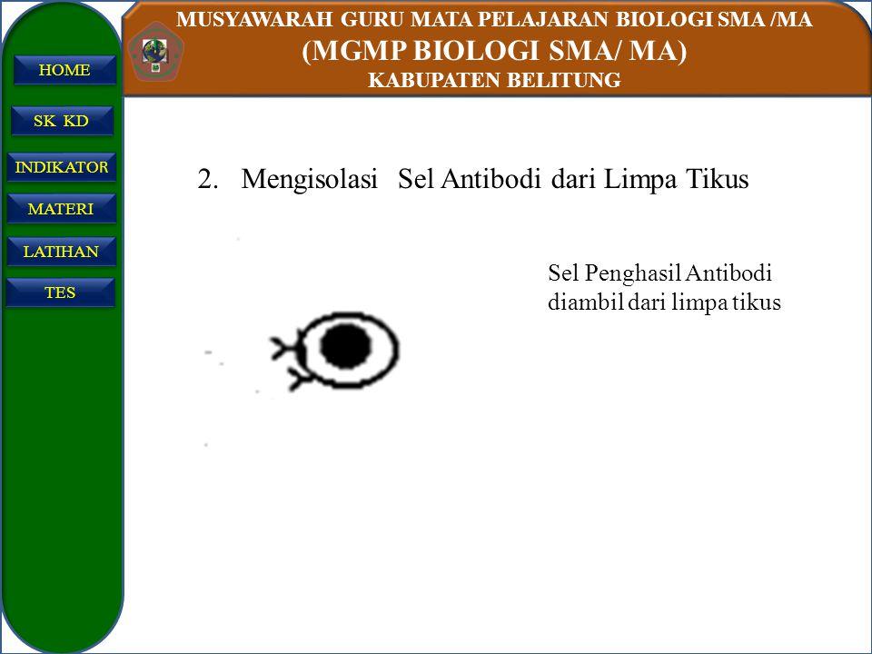 MUSYAWARAH GURU MATA PELAJARAN BIOLOGI SMA /MA (MGMP BIOLOGI SMA/ MA) KABUPATEN BELITUNG SK KD INDIKATO R INDIKATO R MATERI LATIHAN TES HOME 2.Mengiso
