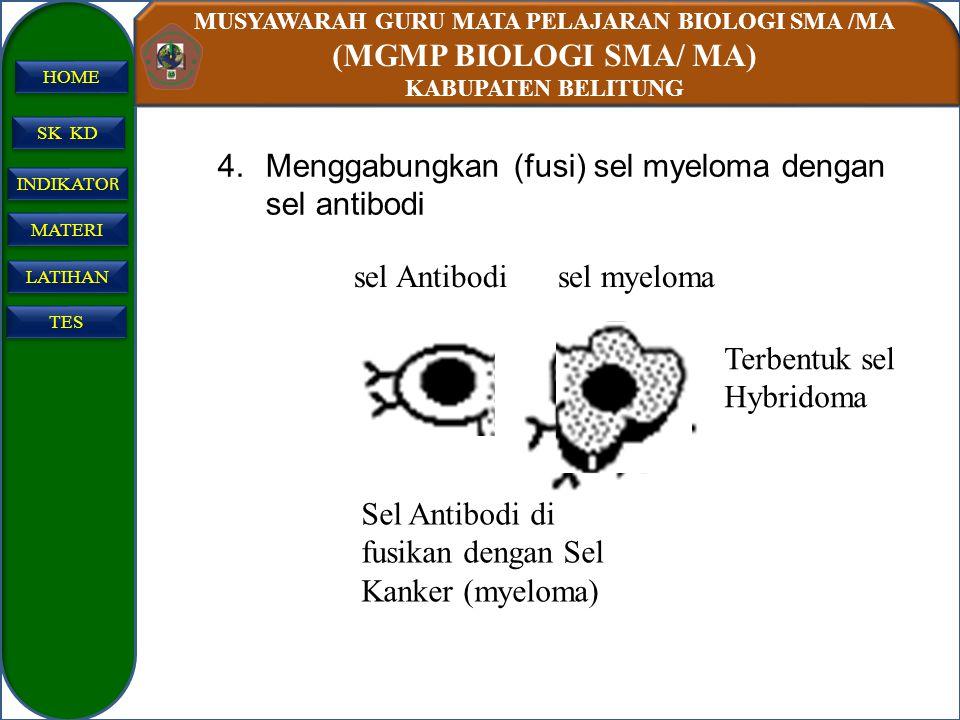 MUSYAWARAH GURU MATA PELAJARAN BIOLOGI SMA /MA (MGMP BIOLOGI SMA/ MA) KABUPATEN BELITUNG SK KD INDIKATO R INDIKATO R MATERI LATIHAN TES HOME 4.Menggab