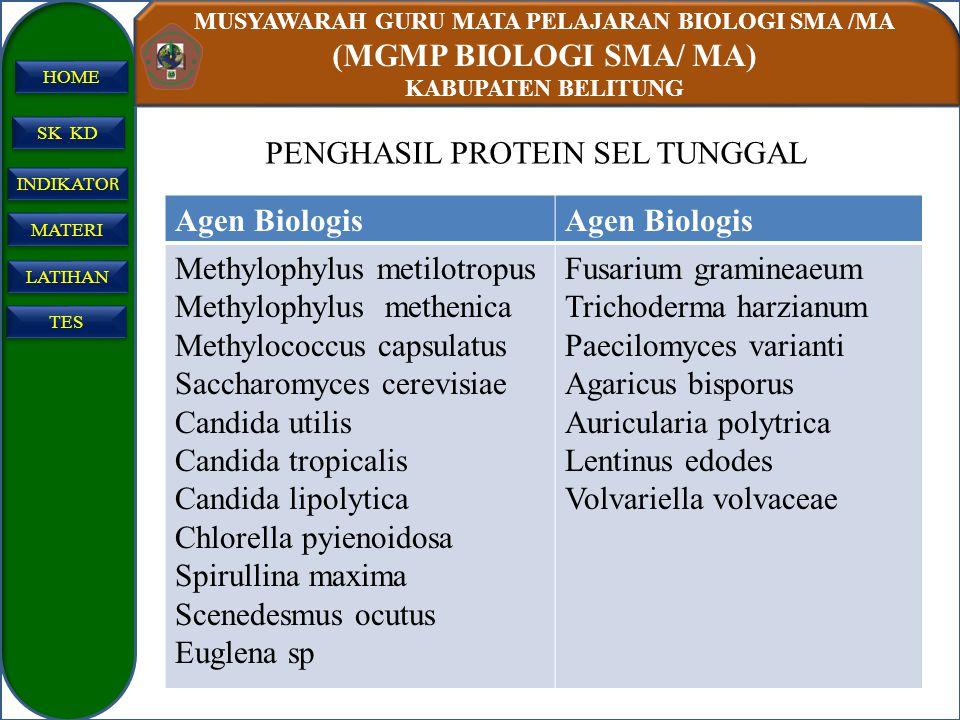 MUSYAWARAH GURU MATA PELAJARAN BIOLOGI SMA /MA (MGMP BIOLOGI SMA/ MA) KABUPATEN BELITUNG SK KD INDIKATO R INDIKATO R MATERI LATIHAN TES HOME Agen Biol
