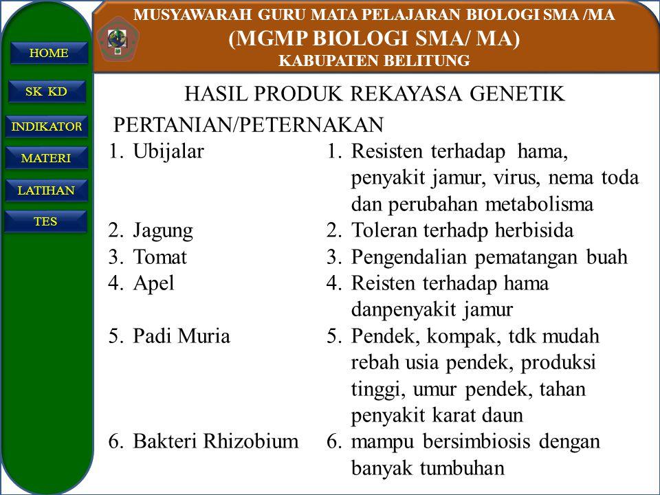 MUSYAWARAH GURU MATA PELAJARAN BIOLOGI SMA /MA (MGMP BIOLOGI SMA/ MA) KABUPATEN BELITUNG SK KD INDIKATO R INDIKATO R MATERI LATIHAN TES HOME HASIL PRO