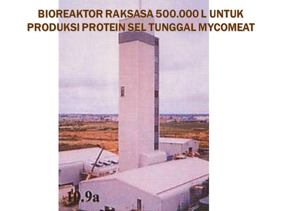 BIOREAKTOR RAKSASA 500.000 L UNTUK PRODUKSI PROTEIN SEL TUNGGAL MYCOMEAT