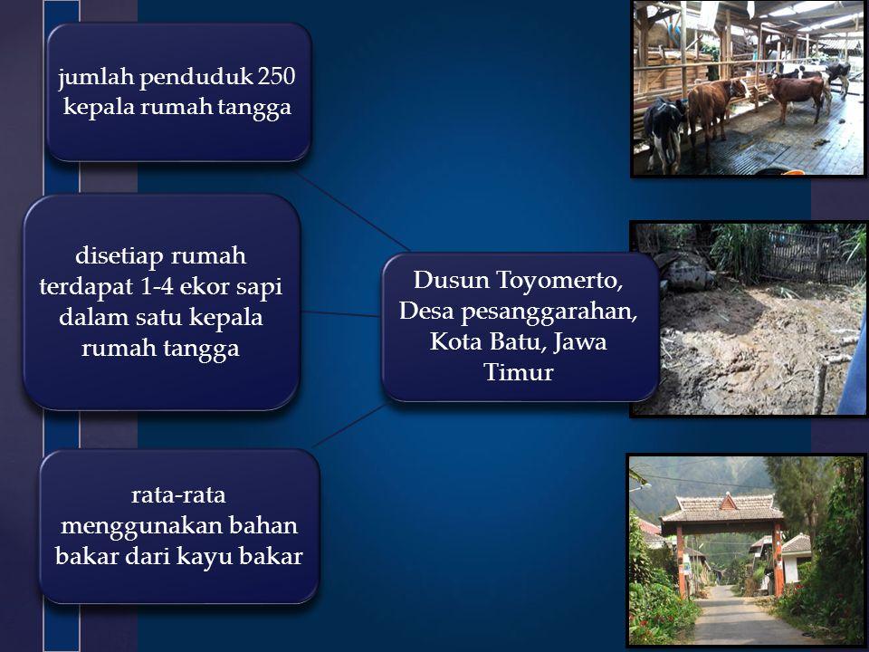 Dusun Toyomerto, Desa pesanggarahan, Kota Batu, Jawa Timur jumlah penduduk 250 kepala rumah tangga rata-rata menggunakan bahan bakar dari kayu bakar d