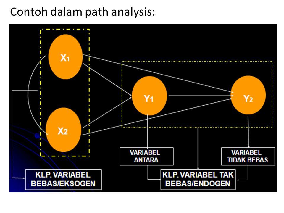 Contoh dalam path analysis: