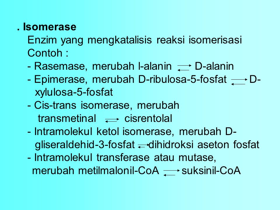 . Isomerase Enzim yang mengkatalisis reaksi isomerisasi Contoh : - Rasemase, merubah l-alanin D-alanin - Epimerase, merubah D-ribulosa-5-fosfat D- xylulosa-5-fosfat - Cis-trans isomerase, merubah transmetinal cisrentolal - Intramolekul ketol isomerase, merubah D- gliseraldehid-3-fosfat dihidroksi aseton fosfat - Intramolekul transferase atau mutase, merubah metilmalonil-CoA suksinil-CoA