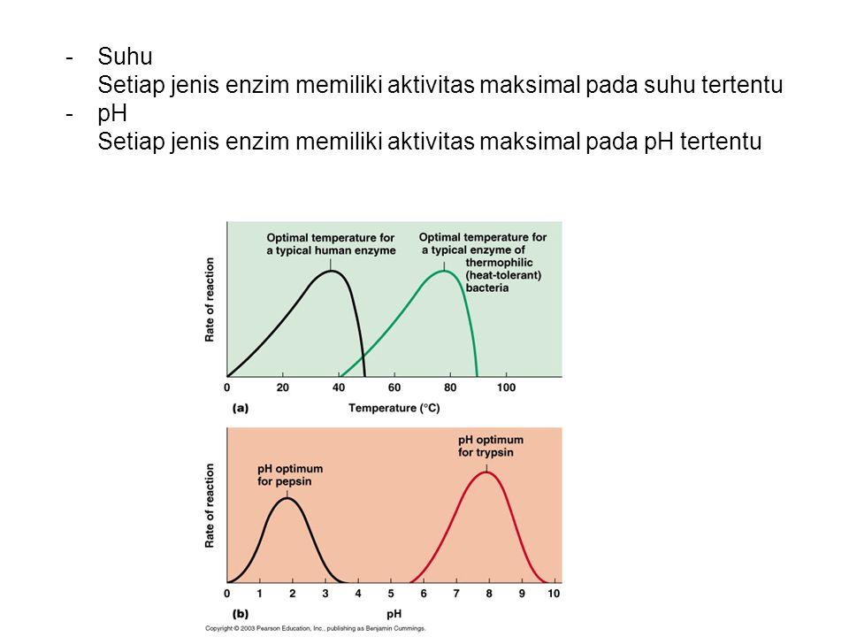 -Suhu Setiap jenis enzim memiliki aktivitas maksimal pada suhu tertentu -pH Setiap jenis enzim memiliki aktivitas maksimal pada pH tertentu