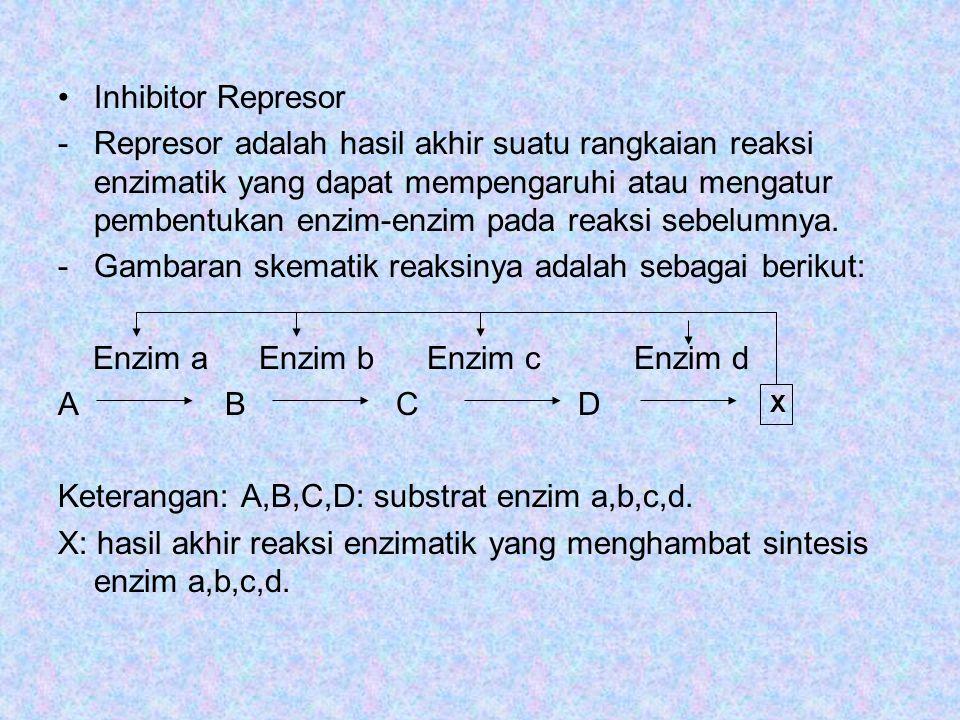 Inhibitor Represor -Represor adalah hasil akhir suatu rangkaian reaksi enzimatik yang dapat mempengaruhi atau mengatur pembentukan enzim-enzim pada reaksi sebelumnya.