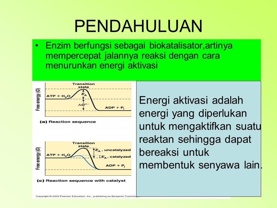 PENDAHULUAN Enzim berfungsi sebagai biokatalisator,artinya mempercepat jalannya reaksi dengan cara menurunkan energi aktivasi Energi aktivasi adalah energi yang diperlukan untuk mengaktifkan suatu reaktan sehingga dapat bereaksi untuk membentuk senyawa lain.