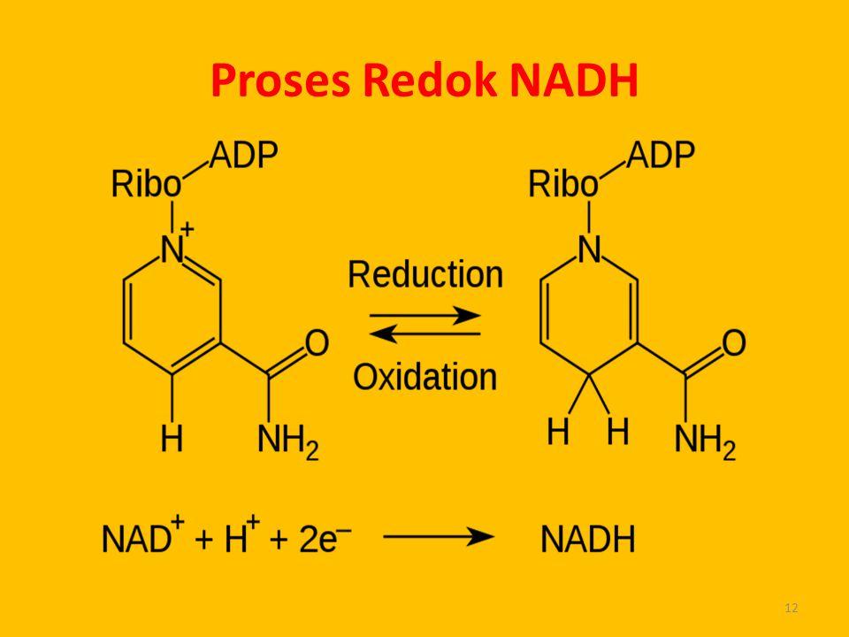 Proses Redok NADH 12