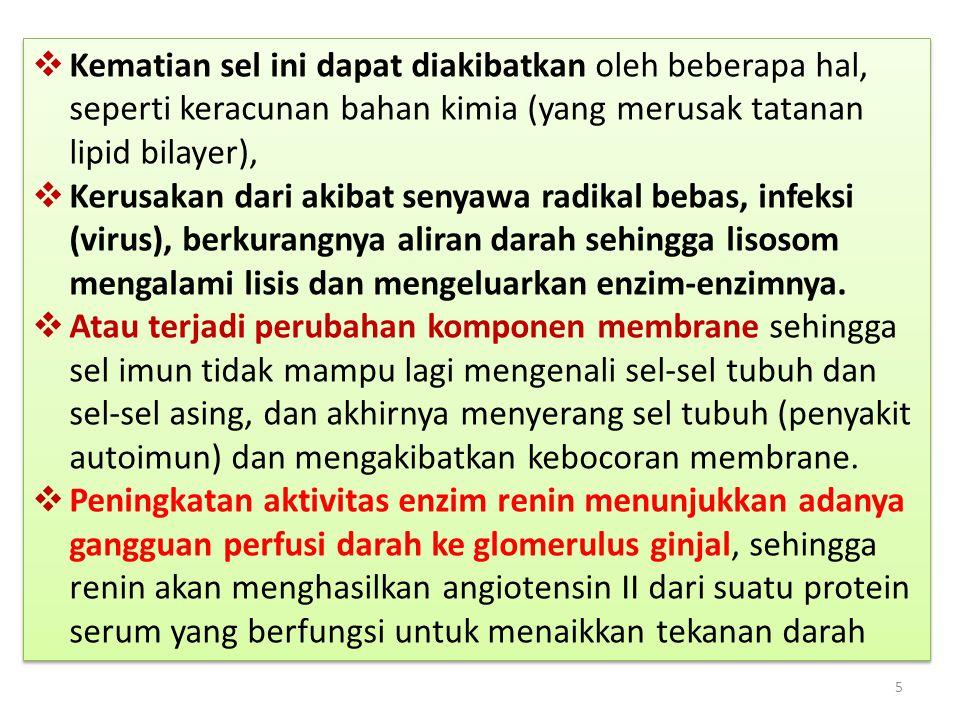 Penjelasan 16