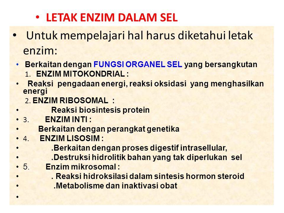 7 Untuk mempelajari hal harus diketahui letak enzim: Berkaitan dengan FUNGSI ORGANEL SEL yang bersangkutan 1.