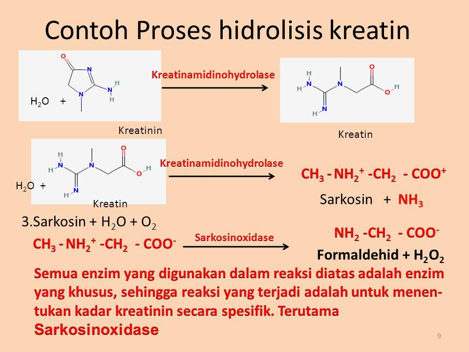 Contoh Proses hidrolisis kreatin 9 H 2 O + Kreatinin Kreatin Sarkosin + NH 3 H 2 O + 3.Sarkosin + H 2 O + O 2 Formaldehid + H 2 O 2