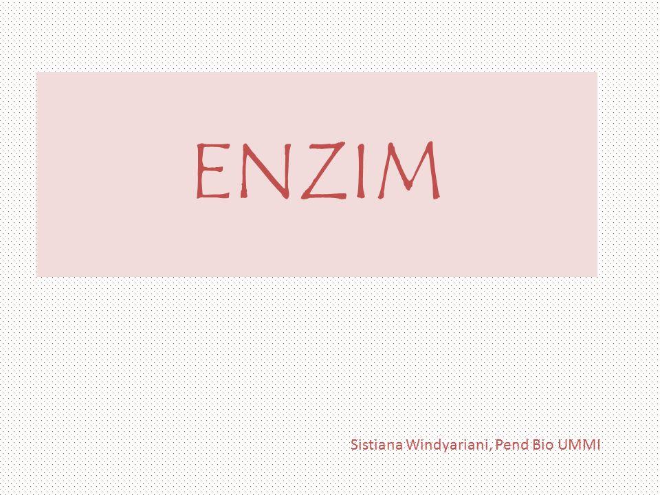 Pendahuluan Enzim adalah protein yang mengkatalisis reaksi-reaksi biokimia.