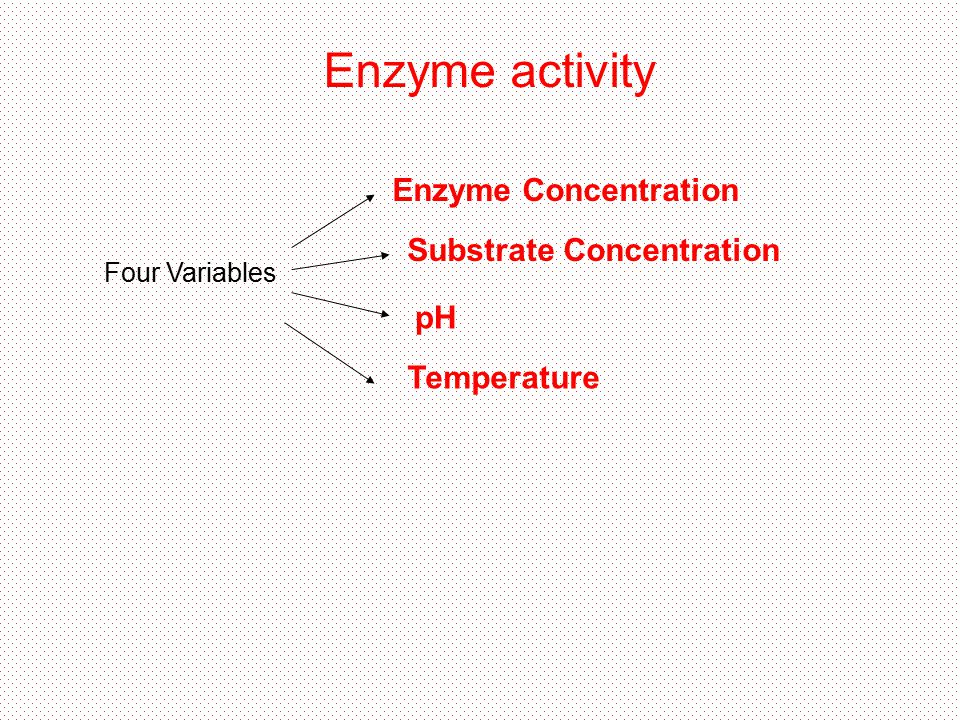 Enzyme activity Four Variables Temperature pH Enzyme Concentration Substrate Concentration