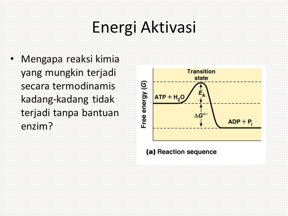 Energi Aktivasi Mengapa reaksi kimia yang mungkin terjadi secara termodinamis kadang-kadang tidak terjadi tanpa bantuan enzim?