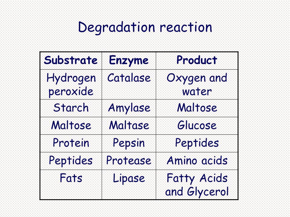 Inhibitors Inhibitor adalah bahan kimia yang mengurangi rata-rata reaksi enzim Spesifik dan bekerja pada konsentrasi rendah Memblok kerja enzim tp biasanya tidak merusak enzim Banyak obat dan racun merupakan inhibitor
