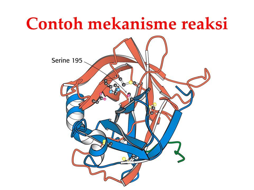 Contoh mekanisme reaksi