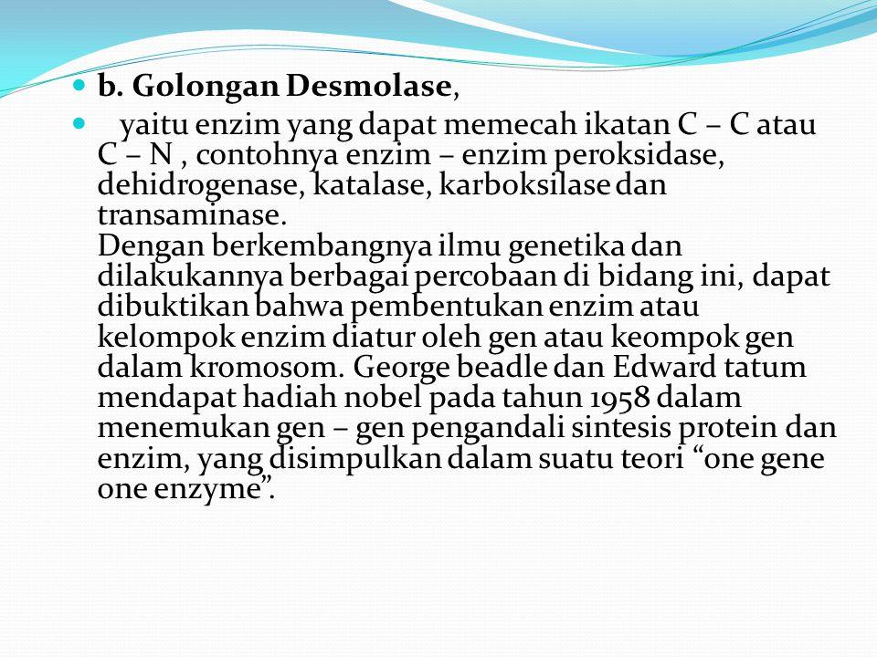 b. Golongan Desmolase, yaitu enzim yang dapat memecah ikatan C – C atau C – N, contohnya enzim – enzim peroksidase, dehidrogenase, katalase, karboksil