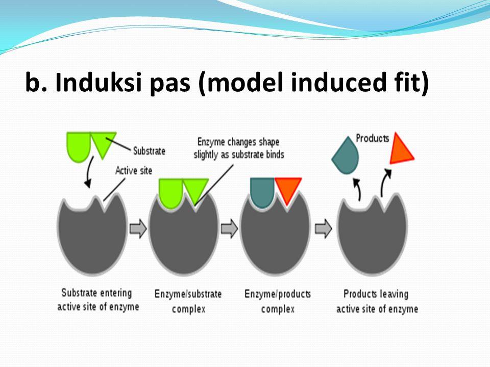 Faktor – faktor yang mempengaruhi kerja enzim Faktor – faktor tersebut diantaranya: a.