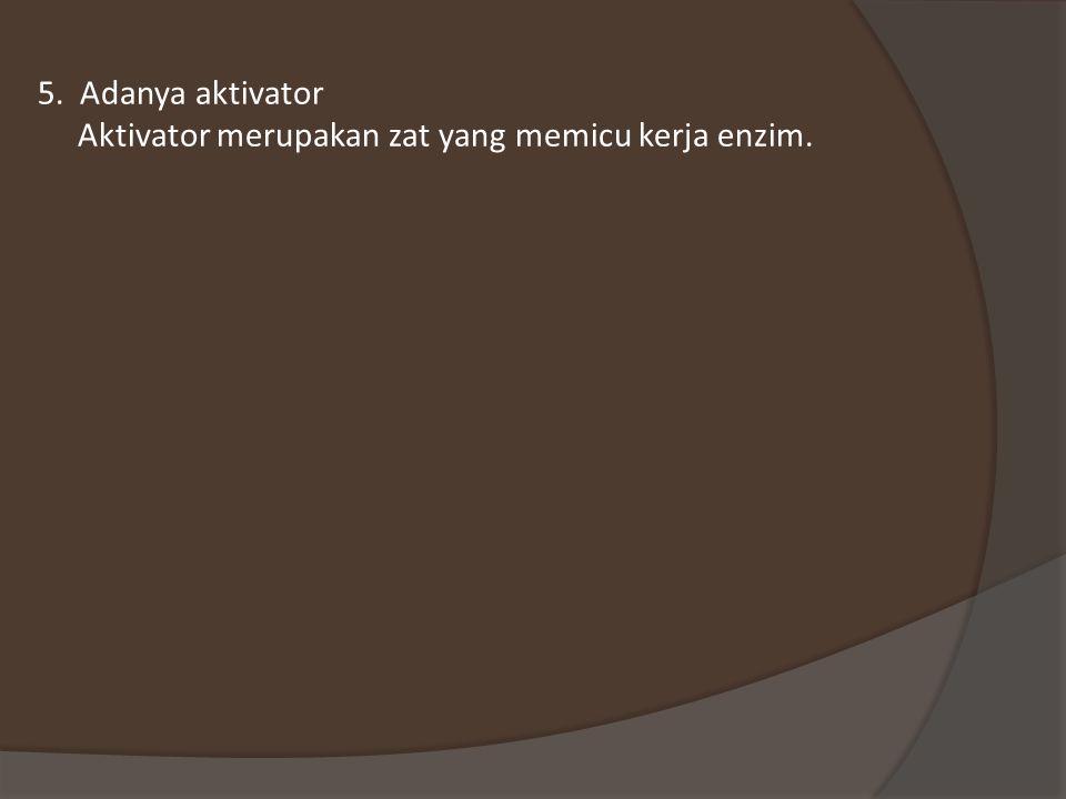 5. Adanya aktivator Aktivator merupakan zat yang memicu kerja enzim.