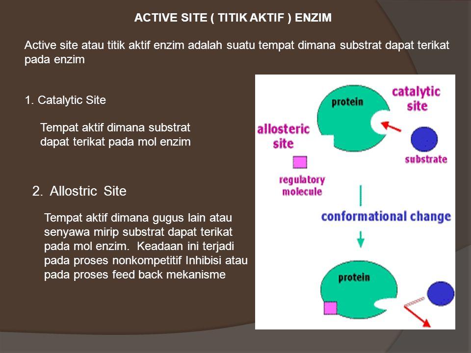 ACTIVE SITE ( TITIK AKTIF ) ENZIM Active site atau titik aktif enzim adalah suatu tempat dimana substrat dapat terikat pada enzim 1.