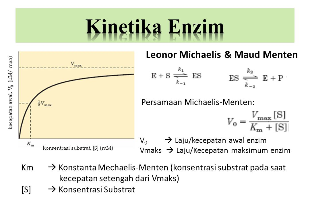 Bila [S]  Km, maka V berbanding lurus dengan (S) Bila [S] = Km, maka V = 1/2 Vmax Bila [S]  Km, maka V = Vmax