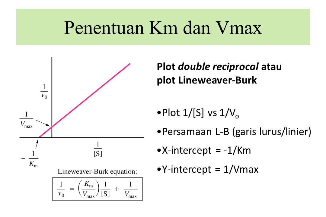Plot double reciprocal atau plot Lineweaver-Burk Penentuan Km dan Vmax Plot 1/[S] vs 1/V o Persamaan L-B (garis lurus/linier) X-intercept = -1/Km Y-intercept = 1/Vmax