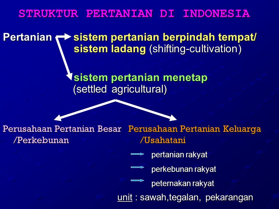 STRUKTUR PERTANIAN DI INDONESIA Pertanian sistem pertanian berpindah tempat/ sistem ladang (shifting-cultivation) sistem pertanian menetap (settled ag