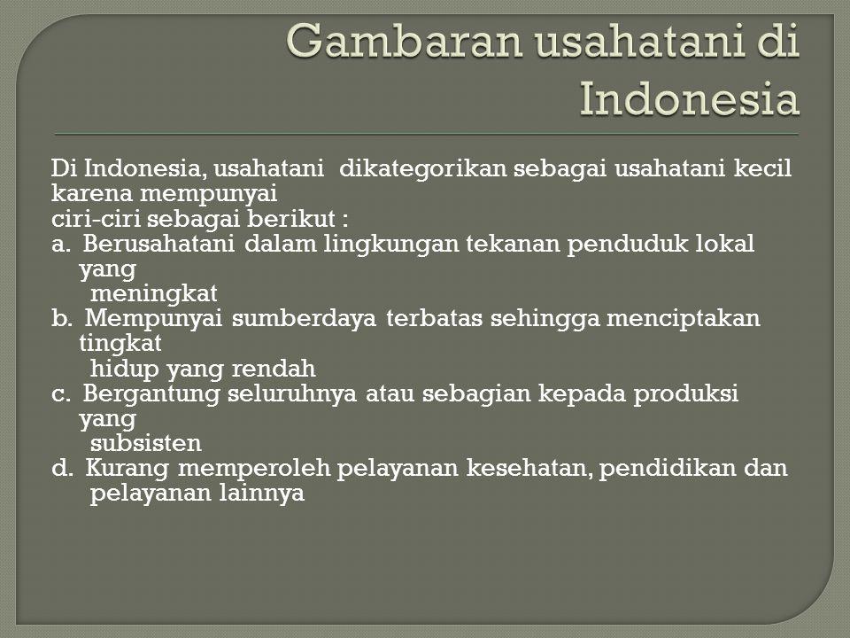 Di Indonesia, usahatani dikategorikan sebagai usahatani kecil karena mempunyai ciri-ciri sebagai berikut : a. Berusahatani dalam lingkungan tekanan pe
