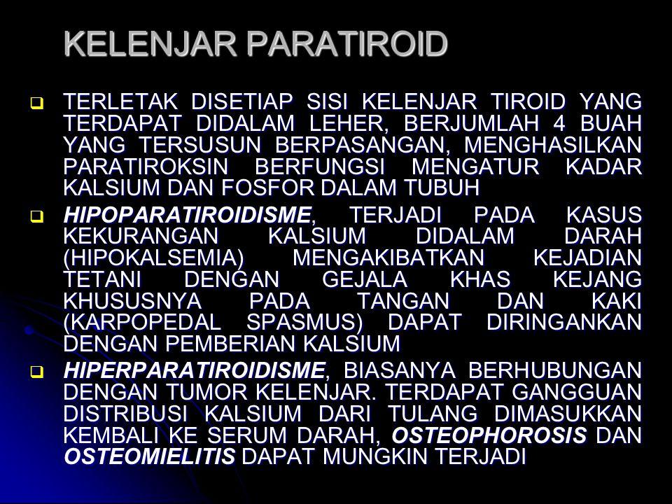 KELENJAR PARATIROID  TERLETAK DISETIAP SISI KELENJAR TIROID YANG TERDAPAT DIDALAM LEHER, BERJUMLAH 4 BUAH YANG TERSUSUN BERPASANGAN, MENGHASILKAN PARATIROKSIN BERFUNGSI MENGATUR KADAR KALSIUM DAN FOSFOR DALAM TUBUH  HIPOPARATIROIDISME, TERJADI PADA KASUS KEKURANGAN KALSIUM DIDALAM DARAH (HIPOKALSEMIA) MENGAKIBATKAN KEJADIAN TETANI DENGAN GEJALA KHAS KEJANG KHUSUSNYA PADA TANGAN DAN KAKI (KARPOPEDAL SPASMUS) DAPAT DIRINGANKAN DENGAN PEMBERIAN KALSIUM  HIPERPARATIROIDISME, BIASANYA BERHUBUNGAN DENGAN TUMOR KELENJAR.