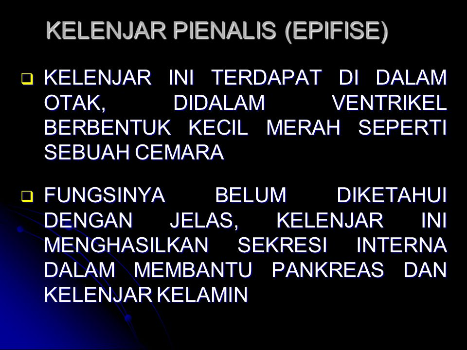 KELENJAR PIENALIS (EPIFISE)  KELENJAR INI TERDAPAT DI DALAM OTAK, DIDALAM VENTRIKEL BERBENTUK KECIL MERAH SEPERTI SEBUAH CEMARA  FUNGSINYA BELUM DIK