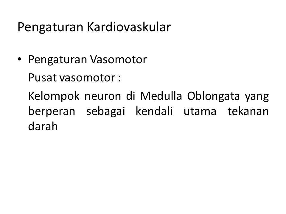 Pengaturan Kardiovaskular Pengaturan Vasomotor Pusat vasomotor : Kelompok neuron di Medulla Oblongata yang berperan sebagai kendali utama tekanan dara
